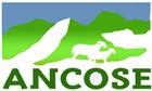 Ancose